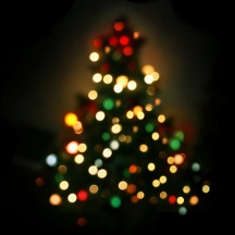 Christmas Tree - Defocused