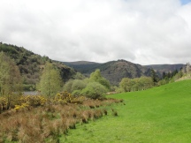 Glendalough Upper Lake, Ireland (2013). Image credit: Kathleen Horgan