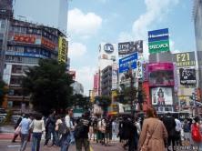 Shibuya: Busy Intersection
