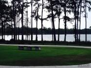 Admiring Honey Lake