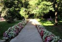 Garden pathway.