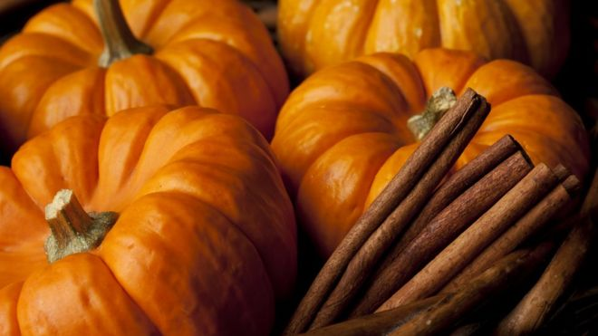 The Best Pumpkin Spice Products You Need to Buy Now