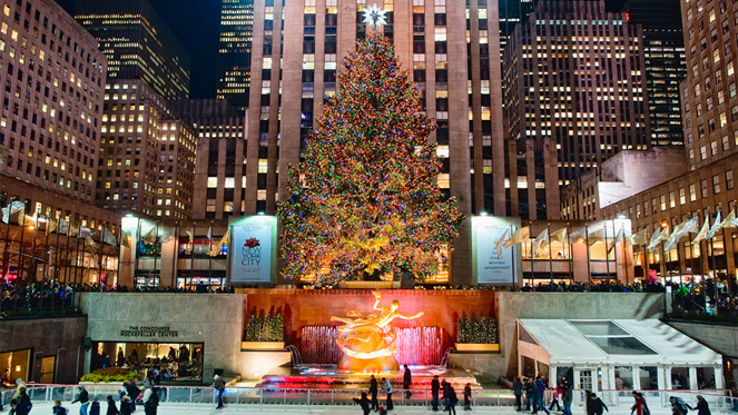 The Most Beautiful Christmas Trees in the US to Check out This Season