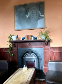 The Elephant House Cafe