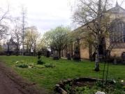 Greyfriar's Kirkyard